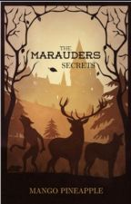 The Marauder's Secrets   (Year One)     by MangoPinapple3