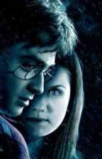 Hinny After Second War by XxAthenaPotterxX