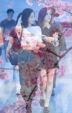 Cherry Blossoms ; Jensoo by yujamseulgi