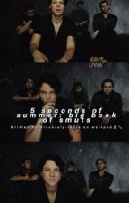 5 seconds of summer : big book of smuts by sincerley-louis