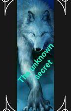 The Unknown Secret by Biiaattcchh0211