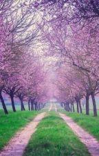 The Eternity Sakura Tree by lolzebras2001