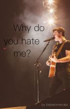 Why do you hate me? by biebersmendes