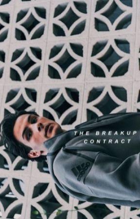 The Break Up Contract | Mathew Barzal Sequel by Kk_lmao_1995