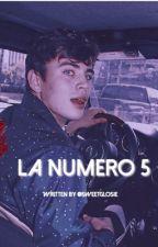 La Numero 5;Hayes Grier by XxfeministgirlxX