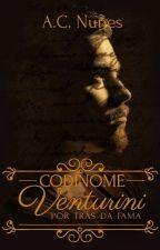 Codinome Venturini: Por Trás da Fama [COMPLETO ATÉ 04/11] by AC_NUNES