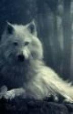 Best Werewolf Stories 2 by caitlin5976