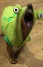 4:00 AM by DitoKrea