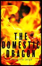 The Domestic Dragon by HelloBeautifulChild