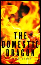 The Domestic Dragon by SamanthaBayers