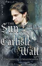 The Sun Shines Fair on Carlisle Wall | #ASnapshotInTime #Wattys2018 by CelticWarriorQueen17