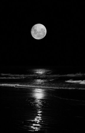 The Moon is My Sun by Ninjagirl5