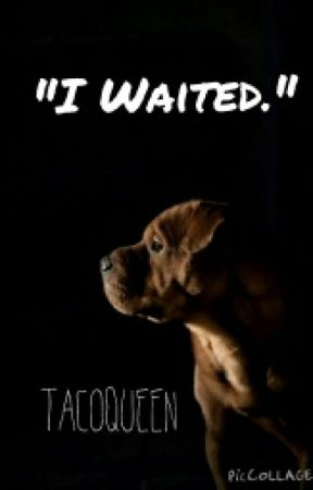 Dog Poems Unconditional Love Wattpad