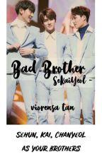 Bad Brother - Sekaiyeol by viorr_