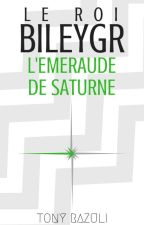 Le Roi Bileygr - L'Émeraude de Saturne by Razuulii