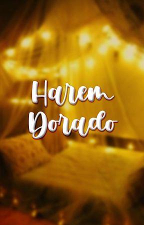 ||Harem Dorado|| by Silver_Saint