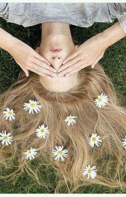 Đọc truyện [ Vkook] [ Hoàn] [ Short Fic] Daisy, you are so beautiful...