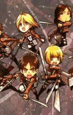 Attack on Titan X Reader by AikoRebel