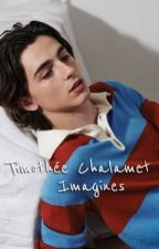 timothee chalamet imagines by HeartbrokenBabe