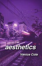 aesthetics open by exclusivelyvenice
