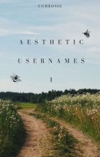 • aesthetic usernames: 1 • by ughrosie