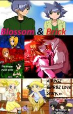 Blossom and Brick a ppgz and rrbz love story by FanFictionWriter17