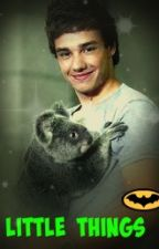 Little Things(Liam Payne Love Story) by LiamsLoveForever