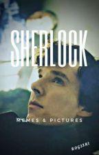 Sherlock Memes  by rog3ski