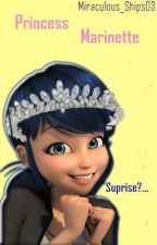 Princess Marinette || MLB Fan-Fiction. {No more updates} by Miraculous_Ships03