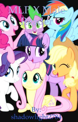 Mlp/OC Female Characters X Reader (Complete) - Princess