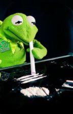 The best Kermit meme compilation  by animeforlife1772