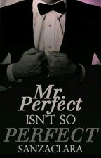 Mr. Perfect Isn't So Perfect by hidingsecret