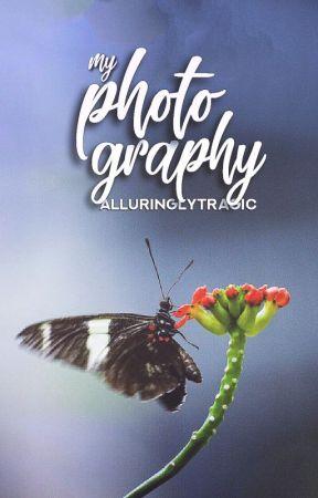 Photography by alluringlytragic