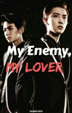 Fucking My Enemy Sideways (CHANBAEK/BAEKYEOL)18+ by EwwBitchDie