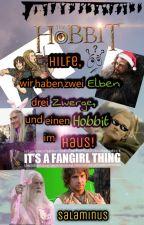 Hilfe, wir haben zwei Elben, drei Zwerge und einen Hobbit im Haus! // Hobbit FF by Salaminus