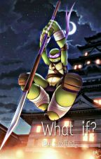 What If? [Donatello x Reader] (Discontinued) by iwonthesitatebtch