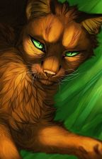 Fire and Smoke    Fireheart x Reader by xMorgenne