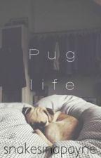 Pug life ♛ Lirry / ziall a.u  (bxb) by Snakesinapayne