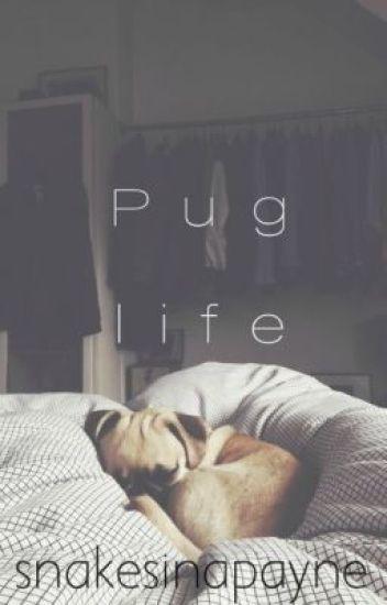 Pug life ♛ Lirry / ziall a.u  (bxb)
