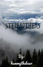 Stepbrothers by hammythebear