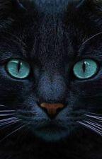 ¿Que personaje de los gatos guerreros serias? by user23456042