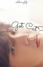 Got Cat? by catchumylife