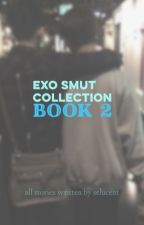 EXO SMUT COLLECTION : BOOK 2 by selucent
