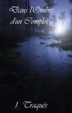 Dans l'ombre d'un Complot by DiamsieLGDC
