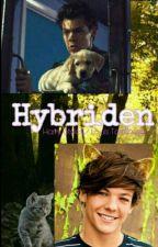 """""""Hybriden"""" Harry Styles/ Louis Tomlinson by HNLLZ-love"""