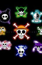 ¿Nueva nakama?  (One Piece y tu)  by araceli075
