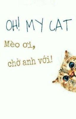 Oh! My cat - Mèo ơi, chờ anh với!