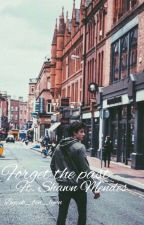 Forget the past ft. Shawn Mendes by LynnyMendes