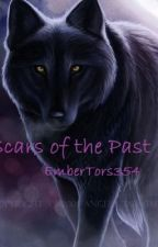 Scars of the Past by EmberTora354