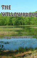 The WillowGrove (Niall Horan) by NiallJamesHoran2116